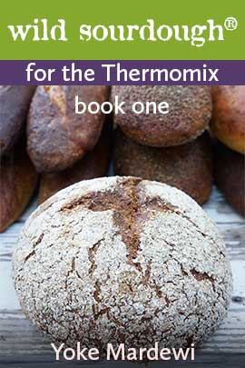 cover-wild-sourdough-for-the-thermomix-web